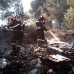 Η Αττική στις φλόγες, πάνω απο 100 οχήματα στην φωτιά