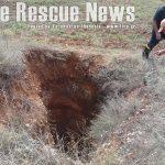 Οι πυροσβέστες έσωσαν το κυνηγετικό σκυλί