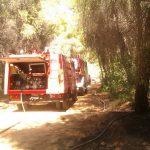 Πυρκαϊά στην Β. Αττική οι Εθελοντικές Ομάδες παρών