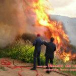 Αγροτοδασική πυρκαγιά στην Πάτρα