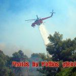 Πυρκαγιά στην Παναγοπούλα