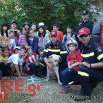 Με επιτυχία ολοκληρώθηκε το 3ο Φεστιβάλ Εθελοντικών Οργανώσεων