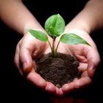 Ανακοίνωση για την Παγκόσμια Ημέρα Περιβάλλοντος