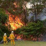 Κατασβέστηκε η πυρκαγιά στο Εθνικό Πάρκο Γιοσέμιτι