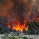 Δημιουργία εθελοντικής ομάδας εργασίας για την πρόληψη δασικών πυρκαγιών στη Ρόδο