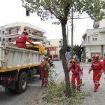 Η Ε.Ο.Δ. σε εθελοντική δράση κλαδέματος και καθαρισμού σηματοδοτών