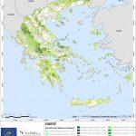 Εθνικό κτηματολόγιο δασικής καύσιμης ύλης αποκτά η Ελλάδα