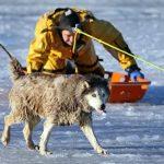 Πυροσβέστης σώζει σκυλί από βέβαιο θάνατο