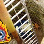 Διάσωση σκύλου από την Πυροσβεστική Υπηρεσία Σερρών