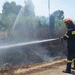 Λέσβος: Κάηκαν ζωντανά 25 πρόβατα