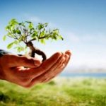 Alpha Bank: Δενδροφύτευση στο Δάσος Καισαριανής