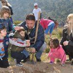 Αναβιώνει το δάσος στο παλιό Νταμάρι στον Υμηττό