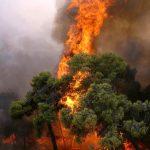 Σύσκεψη Δένδια με εκπροσώπους της αυτοδιοίκησης για τη νέα αντιπυρική περίοδο στην Αττική