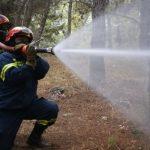 Εκπαίδευση & Μετεκπαίδευση στο πλαίσιο της Σχολής Επιμόρφωσης της Πυροσβεστικής Ακαδημίας του Π.Σ.
