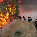 Γρήγορα τέθηκε υπό έλεγχο η πυρκαγιά στο Σελινούντα