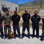 Σχολείο συνοδών σκύλων έρευνας και διάσωσης του Π.Σ.