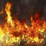Ενημέρωση για τις πυρκαγιές