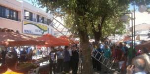 Φίδι βγήκε... για ψώνια σε λαϊκή αγορά στα Τρίκαλα!