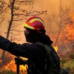 Τι πρέπει να είναι κάποιος για να γίνει πυροσβέστης;