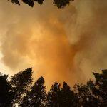 Υπό μερικό έλεγχο η πυρκαγιά στο Εθνικό Πάρκο Γιοσέμιτ