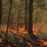 Πρόνοια - Προστασία κτηρίων από δασική πυρκαγιά