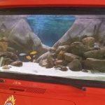 Απίθανοι πυροσβέστες στα Χανιά: Μετέτρεψαν πυροσβεστικό όχημα σε... ενυδρείο