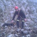 Επιχείρηση της 7ης ΕΜΑΚ για διάσωση σκύλου από γκρεμό