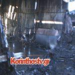 Κάηκε σχεδόν ολοσχερώς εργοστάσιο στο Ζευγολατιό Κορινθίας