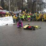 Επιστολή συμπαράστασης της ΠΕΕΠΣ στην Ισπανική Ένωση Δασοπυροσβεστών
