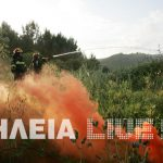 Πανευρωπαϊκή άσκηση της Πυροσβεστικής στην Ολυμπία