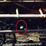 Γιατί η Πυροσβεστική «βλέπει» εμπρησμό του θεάτρου Ρεματιάς στο Χαλάνδρι