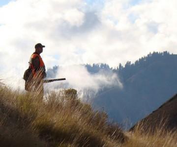 Διαχείριση Δασικών Πυρκαγιών και  ο ρόλος των Κυνηγών