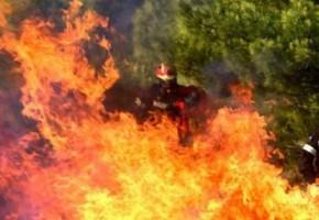 Ηλεία: Καταδικάστηκε ο πρώην νομάρχης και ο δήμαρχος Ζαχάρως για την πυρκαγιά το 2007
