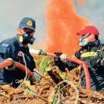 Ελλείψεις-φωτιά απειλούν τα δάση