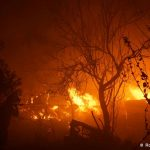 Αποδεκατισμένη η Δασική Υπηρεσία, με μεγάλες ελλείψεις η Πυροσβεστική