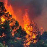 Μεγάλη φωτιά στη Νεάπολη Λακωνίας - Εκκενώνονται χωριά