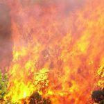 Βρετανός τουρίστας έβαζε φωτιές σε δασική περιοχή στις Αφίδνες «επειδή ήταν μεθυσμένος»