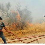 Αλλοθι αποτυχίας στις δασικές πυρκαγιές οι «ελλείψεις της Πυροσβεστικής»