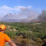 Οι άνθρωποι που βοηθούν στην κατάσβεση όλων των πυρκαγιών στη Χαλκιδική