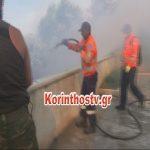 Bίντεο από τη φωτιά μέσα σε αυλές σπιτιών στην περιοχή Κυρά Βρύση Ισθμίων