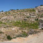 Διάνοιξη δασικού δρόμου στην Πεντέλη