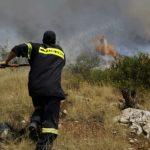 Παρέμβαση για πενταετή πυροσβέστη από την Ενωτική Αγωνιστική Κίνηση