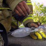 Συγκινητικό βίντεο από κάμερα πυροσβέστη που σώζει γατάκι από φωτιά