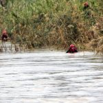 Missing Syrian migrant found drowned in Evros