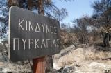 Αναδασωτέες οι δασικές εκτάσεις από πυρκαγιά και άλλες αιτίες