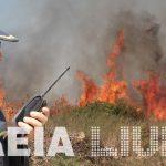 """Ηλεία: Μάστιγα οι """"χειμερινές"""" πυρκαγιές - Ξεπέρασαν τις θερινές"""