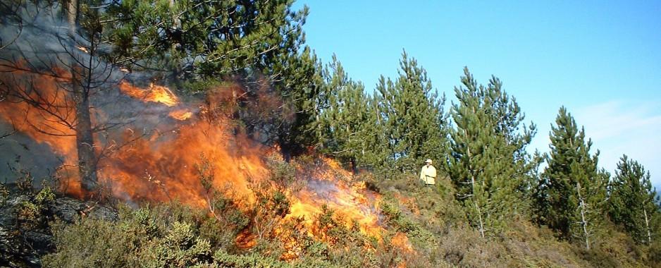 Η Πυροσβεστική συνιστά προσοχή για τον κίνδυνο πυρκαγιών