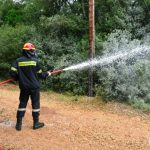"""Επιτυχημένη η άσκηση """"Δια Πυρός 2016"""" στην Κεφαλονιά"""