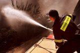 Μονιμοποίηση ή ανανέωση σύμβασης για τους πενταετείς Πυροσβέστες