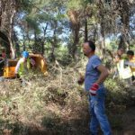 Εργασίες για την πυροπροστασία του δάσους του Αγίου Ματθαίου